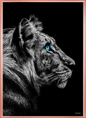 billeder plakater til væggen tiger