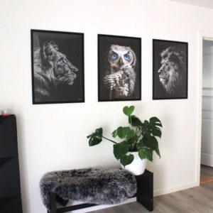 Plakater til stuen