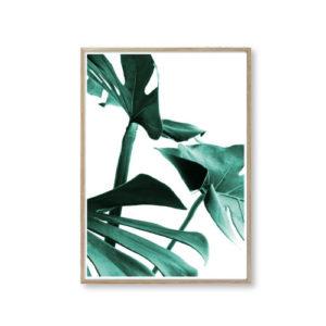 Plakater af blade design