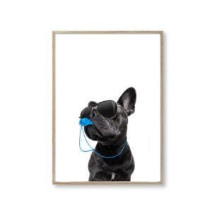 Plakater hund dog stue billige plakat