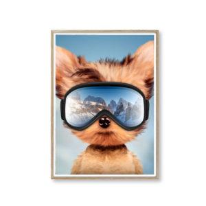 Plakater af sød dyr smarte plakater billige