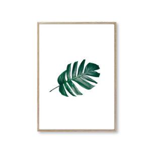 Plakater design blad leaf