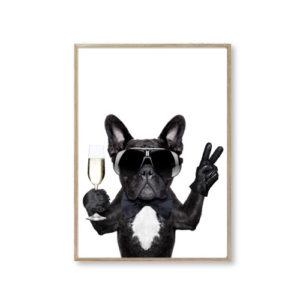 Plakater online bulldog hund