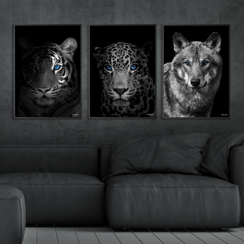 Close-Up-Tiger-Jaguar-Ulv-Plakat-Sorte-Rammer-Eg