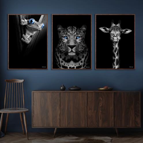 Frø-Gepard-Giraf-Plakat-Mørkebrune-Plakatrammer-Eg