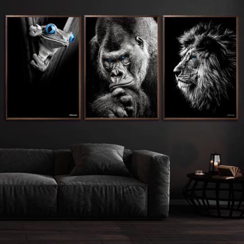 Frø-Gorilla-Løve-Plakater