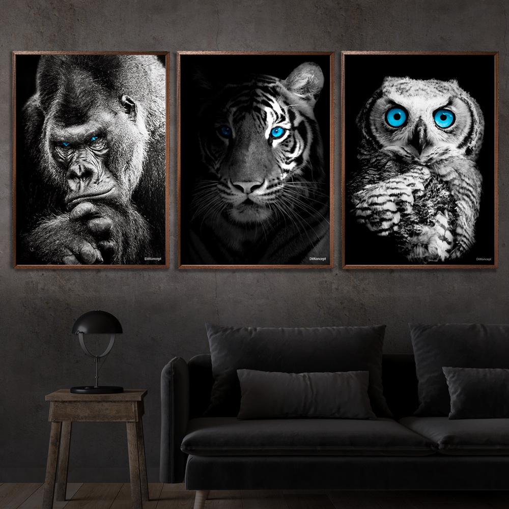 Gorilla-Tiger-Ugle-50x70cm