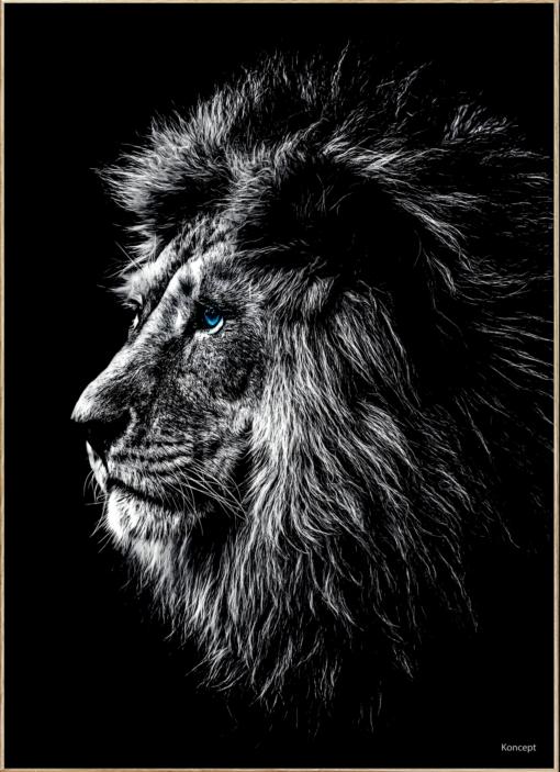 Løve Plakat Hjemmet Bolig Stue