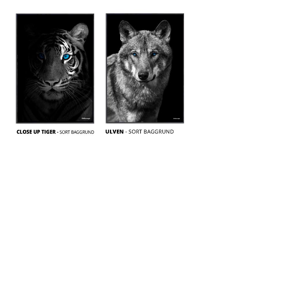 Produktsortiment-Photoshop-DitKoncept-5