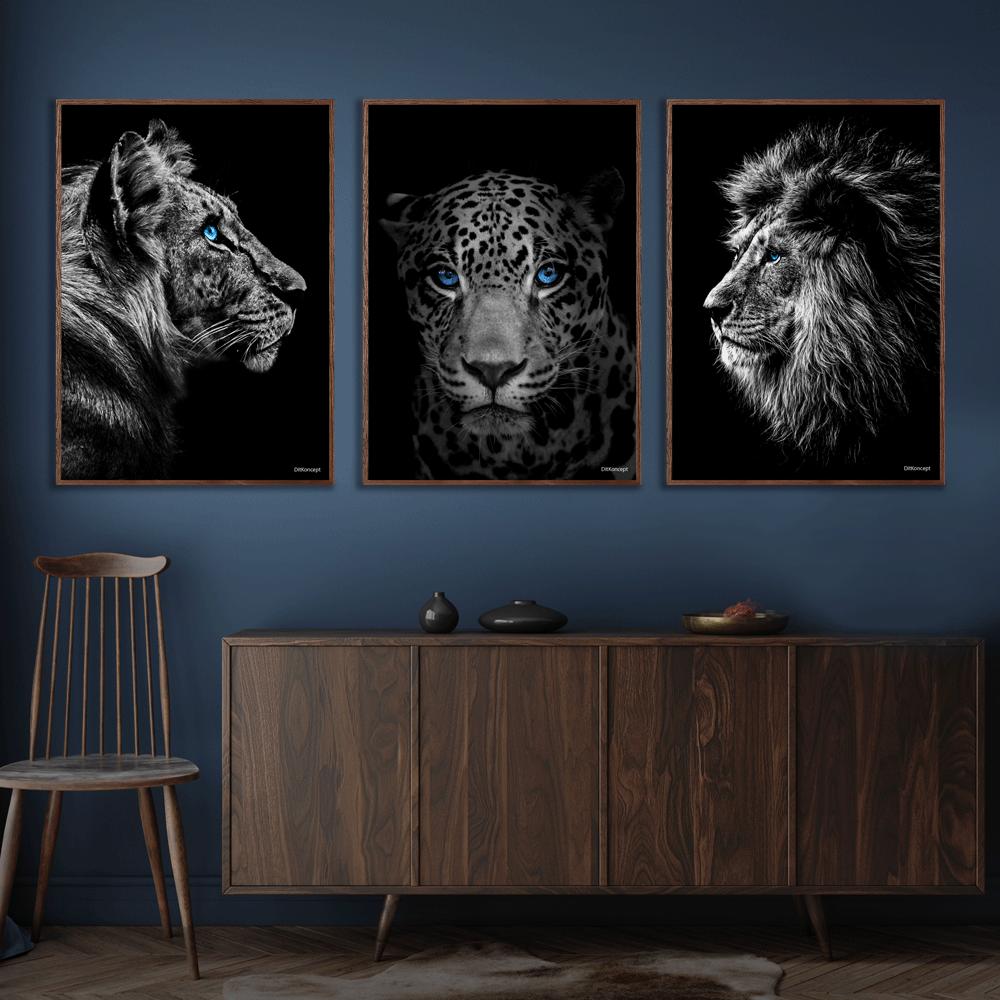Tiger-Jaguar-Løve-Plakat-Mørkebrune-Plakatrammer-Eg