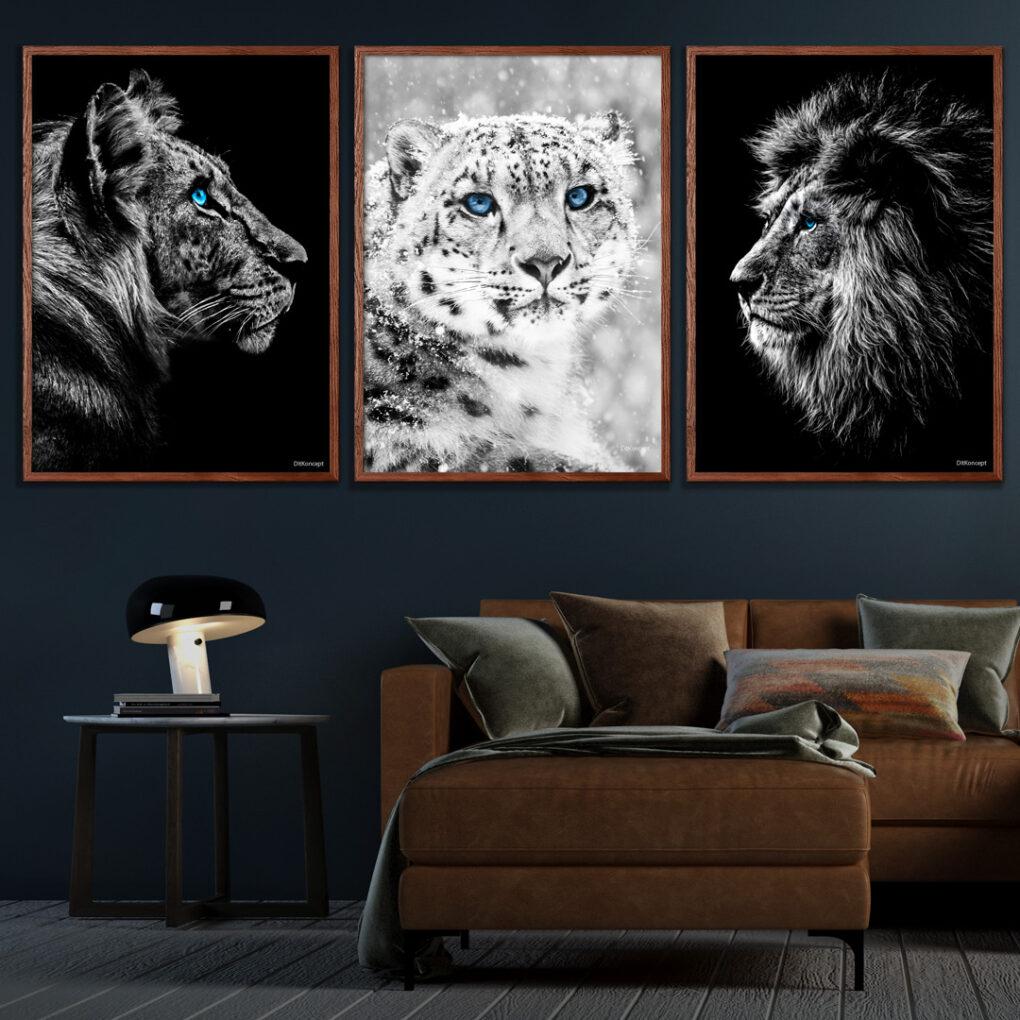 Tiger-Sneleopard-Løve-Plakater