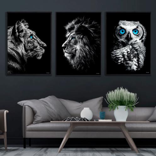 Tiger-Ugle-Løve-Dyreplakater