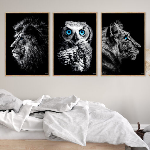 løve-ugle-tiger