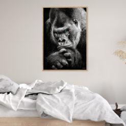 Gorilla Plakat 2