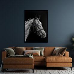 Hesten Plakat