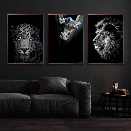 Jaguar-Frø-Løve-Plakat