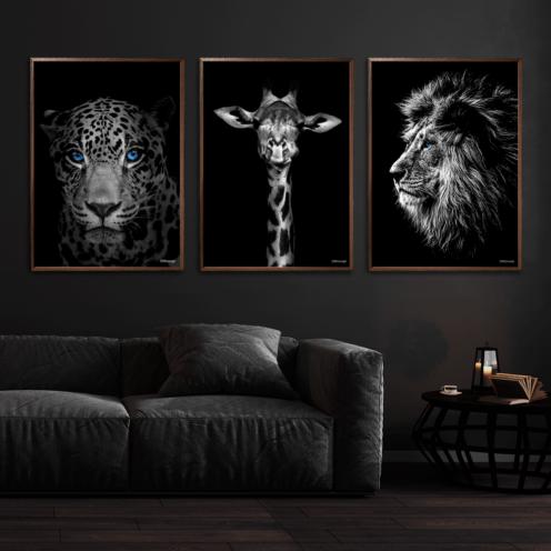 Jaguar-Giraf-Løve-Plakat