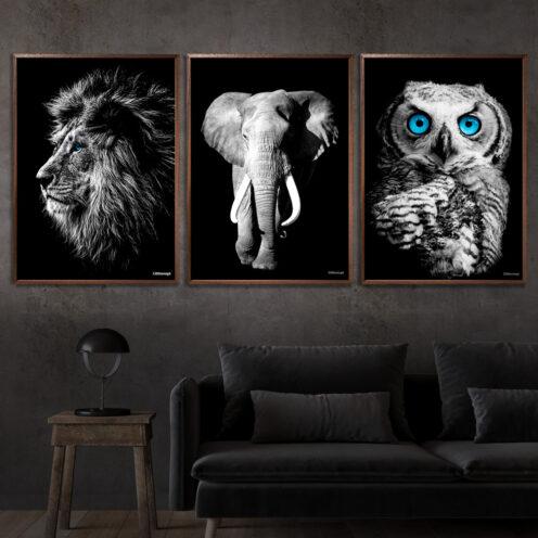 Løve-Elefant-Ugle-Plakat