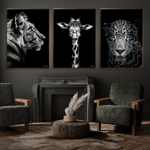 Tiger-Giraf-Jaguar-Plakat