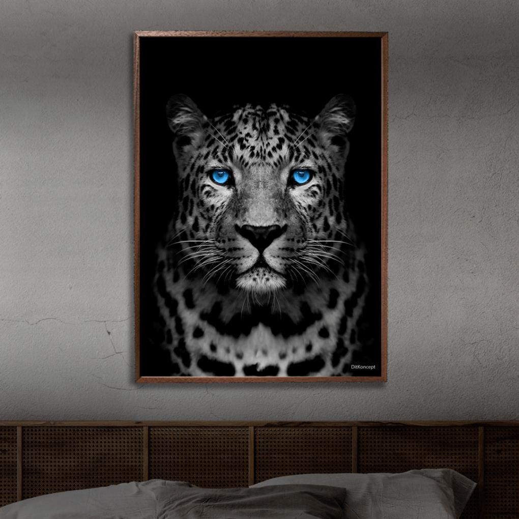 Gepard-plakat-2
