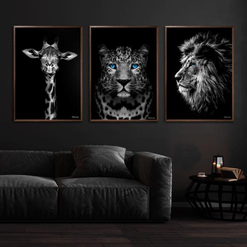 Giraf-Gepard-Løve