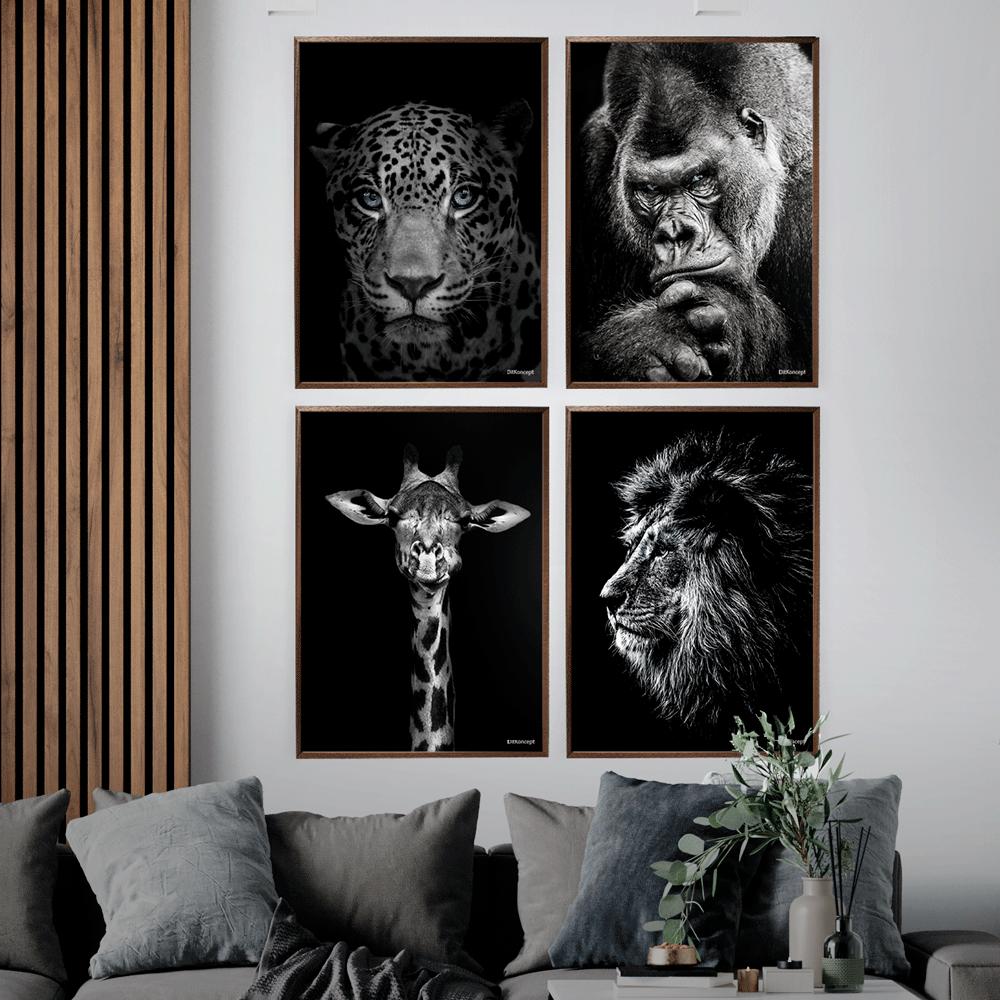 Jaguar Løve Gorilla Giraf