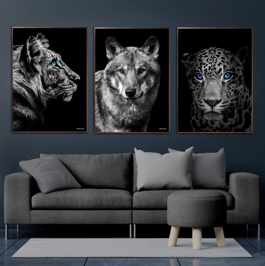 Tiger-Ulv-jaguar