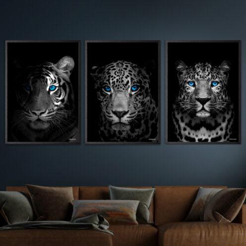 Tiger-jaguar-Gepard