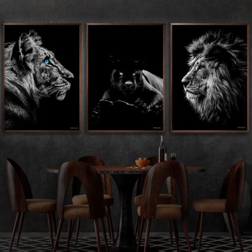 Tiger-puma-Løve