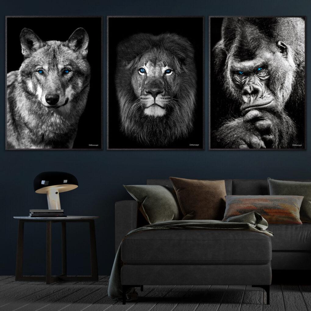 Ulven-Close-Up-Løven-Gorilla