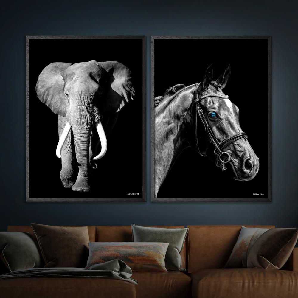 Elefant-Hest