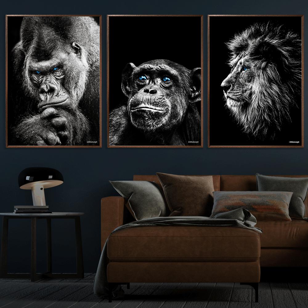 Gorilla-Chimpanse-Løve-Plakater-50x70