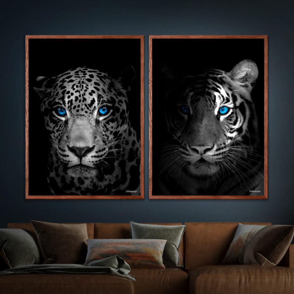 Jaguar-Close-Up-Tiger