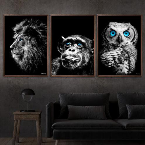 Løve-Chimpanse-Ugle