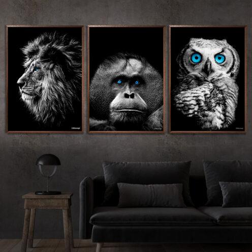 Løve-Orangotang-Ugle-Plakat