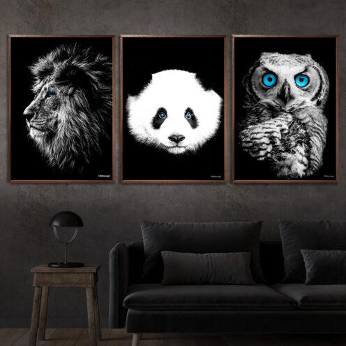 Løve-Panda-Ugle