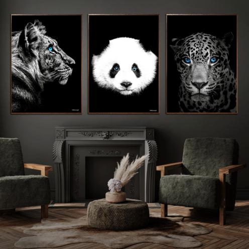 Panda-plakat-Tiger-Løve