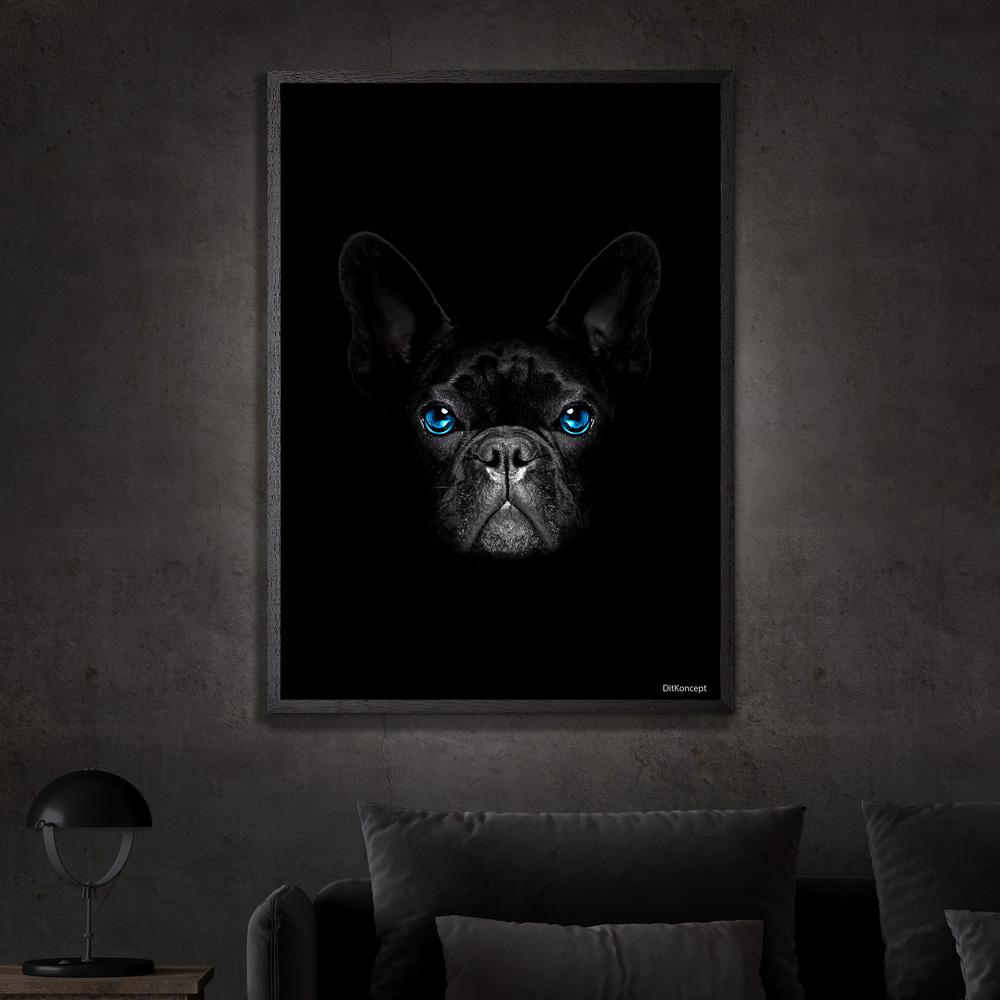 Fransk-Bulldog-Sort-Plakatramme