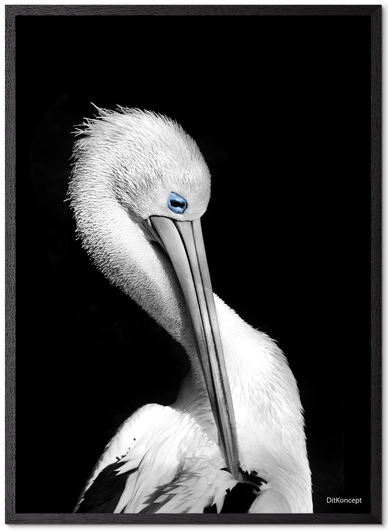 Pelikan-Plakat-sort-Eg-Plakatramme