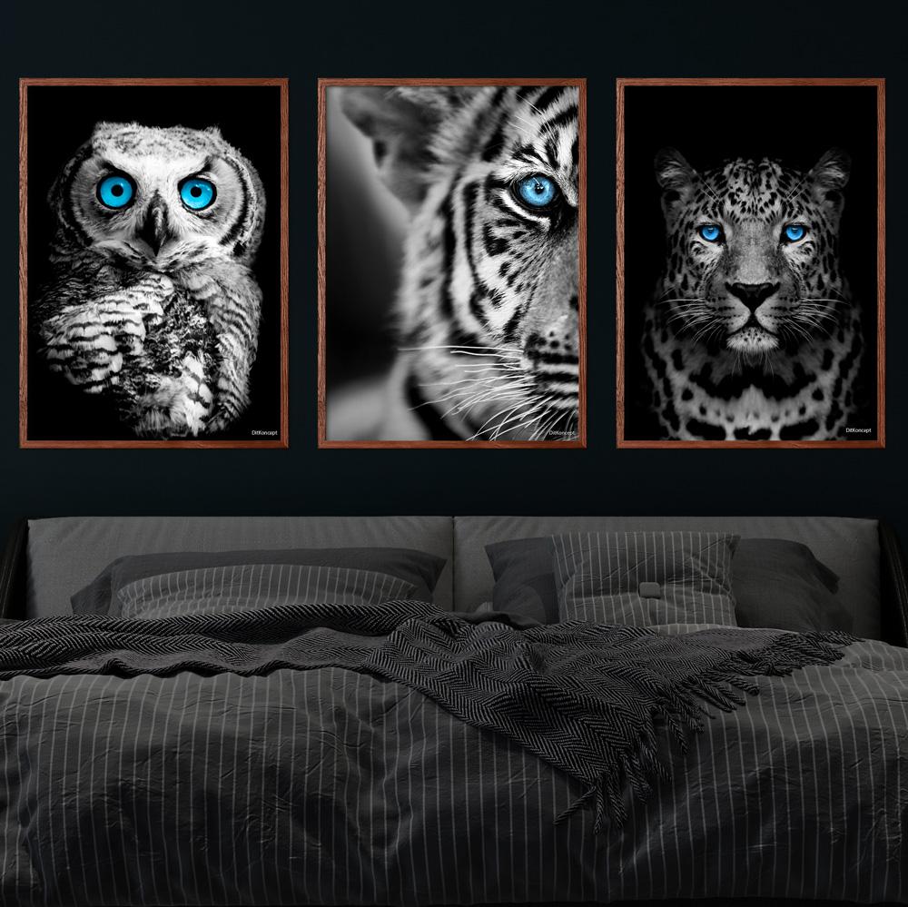 Ugle-Tigerbarn-Gepard