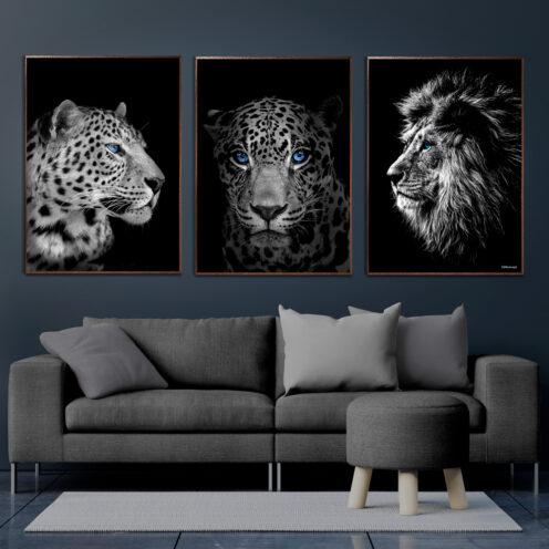 Leopard-Jaguar-Løve