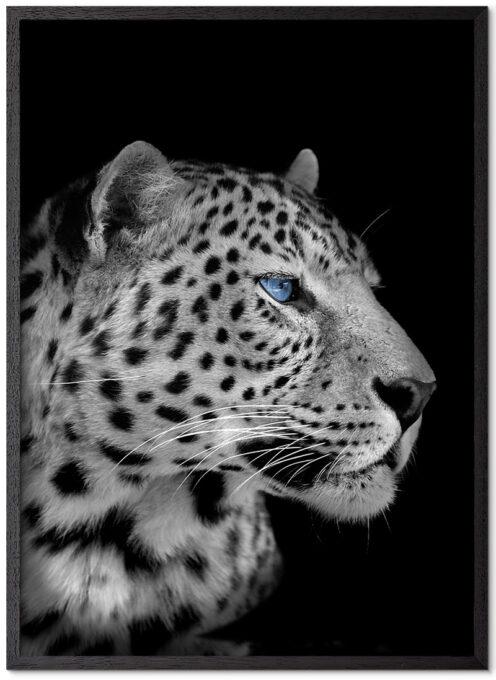 Leopard-Sort-Plakatramme